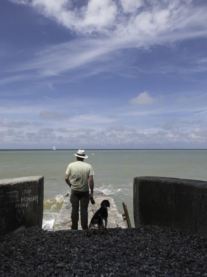 有海的狗观看的天际的人从一个小码头诺马的 库存照片