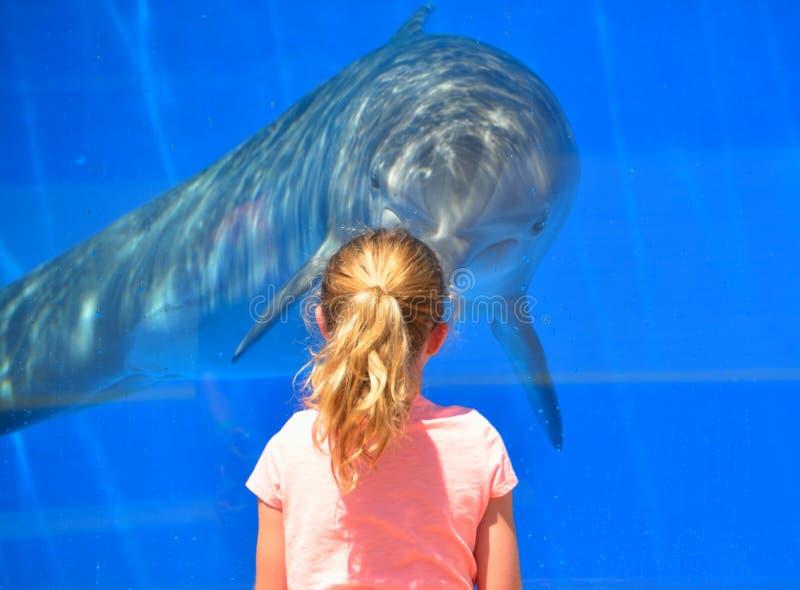 有海豚的女孩 免版税库存图片