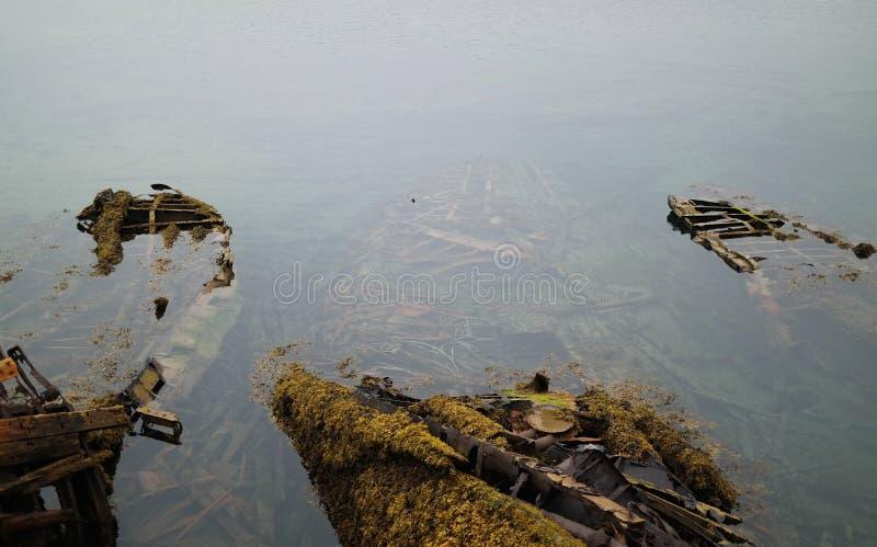有海藻和青苔的一条凹下去的木小船 免版税库存照片