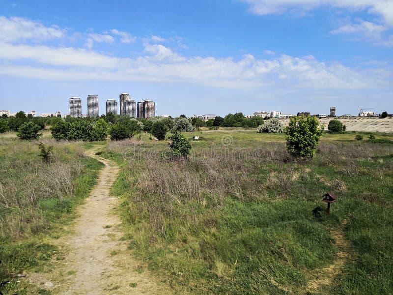 有湖生态系的城市郊区 免版税图库摄影