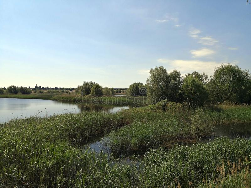 有湖生态系的-都市三角洲城市郊区 免版税库存图片