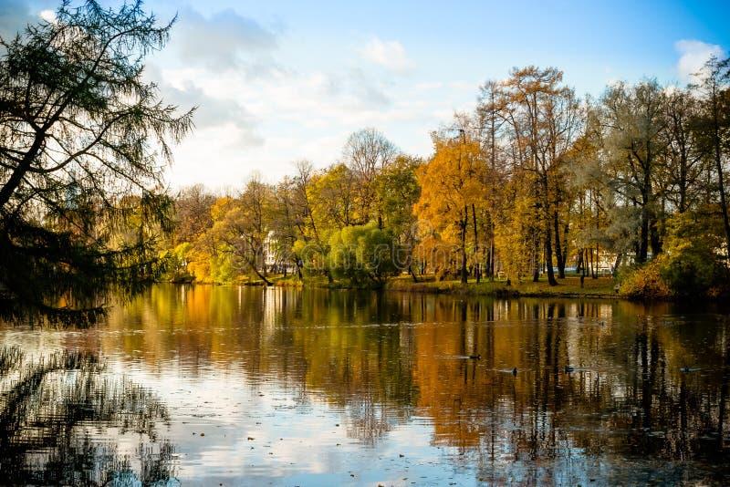 有湖的美丽的秋天公园晴朗的天气的 风景秋天的横向 本质的构成 五颜六色的叶子 免版税库存照片