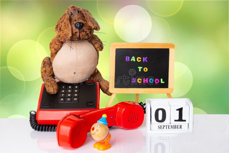 有滑稽的狗的五颜六色的设备和玩具在白色桌a上扮小丑 免版税库存图片