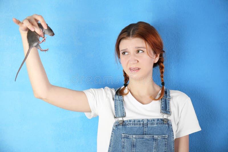 有滑稽的鼠的少年女孩 免版税库存照片