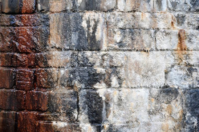 有潮湿的标记的老不规则的湿石墙和开始钙化的矿物的石灰石水条纹形成在树荫下变褐 图库摄影