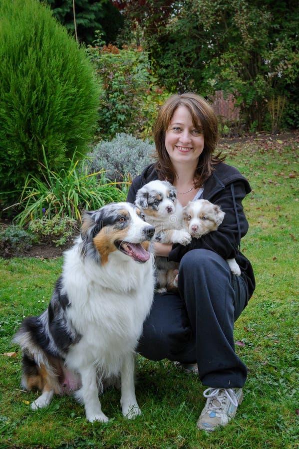 有澳大利亚牧羊人成年女性狗和她的小狗的狗的饲者在胳膊 免版税图库摄影