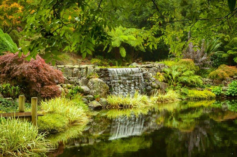 有瀑布的小池塘在公园中间 免版税库存照片