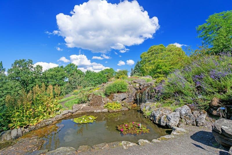 有瀑布的装饰在奥斯陆市的池塘和花停放 免版税库存图片