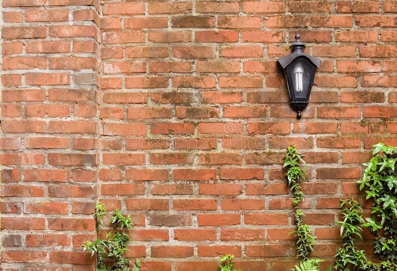 有灯和植物的土气砖墙 图库摄影