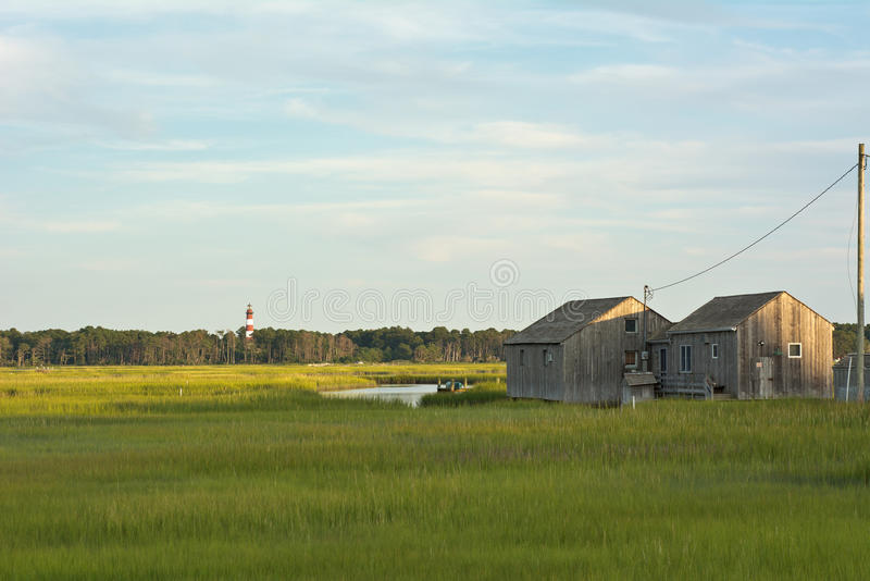 有灯塔和船库的弗吉尼亚沼泽地 免版税库存图片