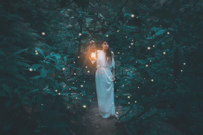 有灯笼的妇女走在土气白色d的有薄雾的森林里的 库存照片