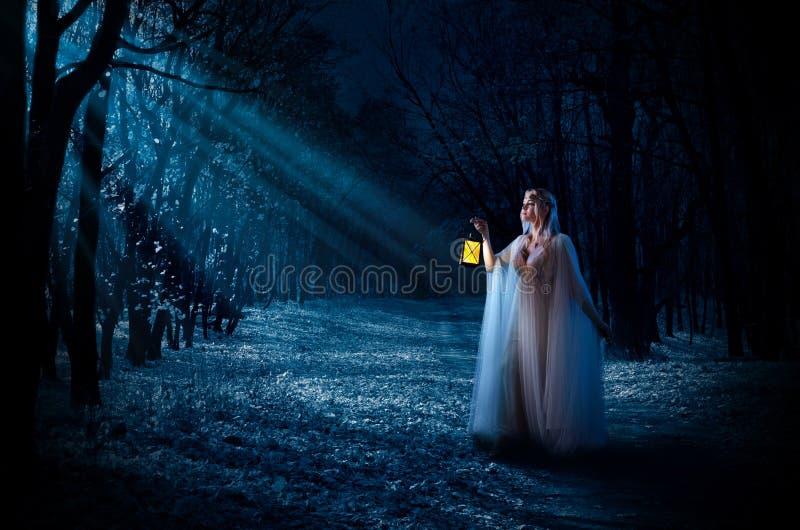 有灯笼的Elven女孩在夜森林 免版税图库摄影