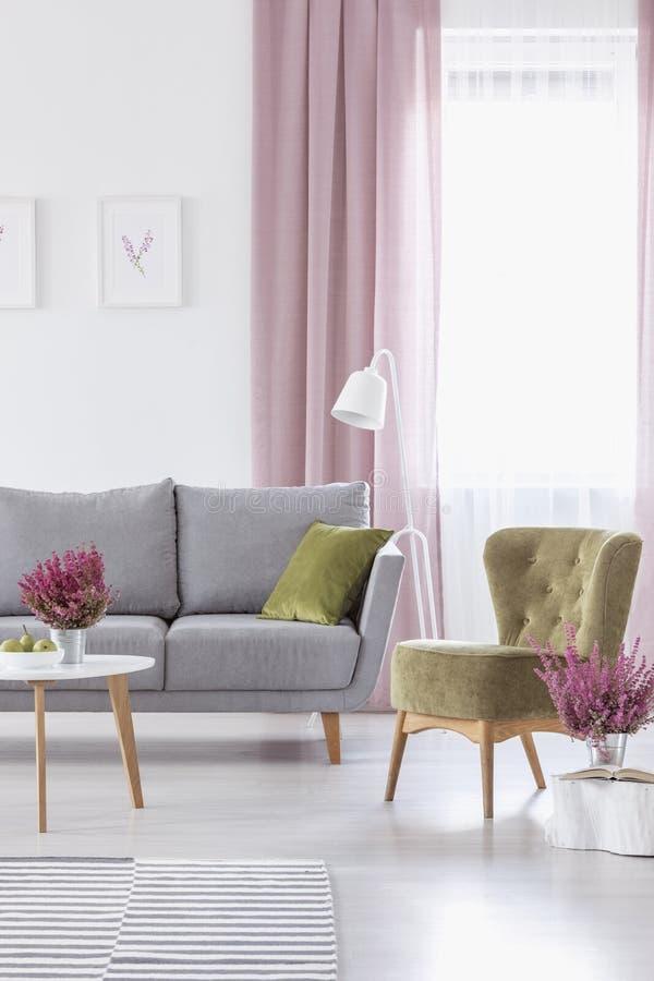 有灰色舒适的长沙发橄榄绿扶手椅子和石南花的典雅的客厅在金属罐 免版税库存图片