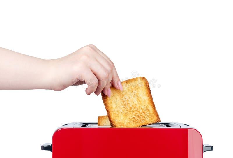 有烤面包片的红色多士炉 手女孩拔出准备好多士 r 文件包含一条道路对隔离 图库摄影