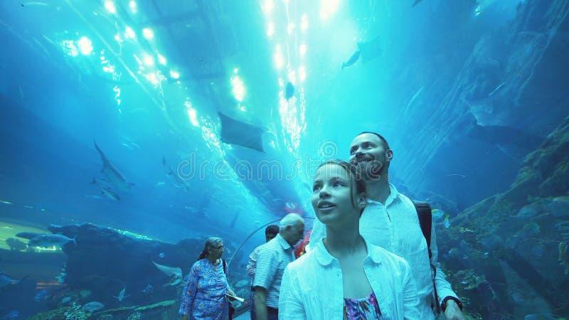 有爸爸的十几岁的女孩敬佩在水族馆的玻璃隧道的海洋生物在迪拜购物中心的 免版税库存图片