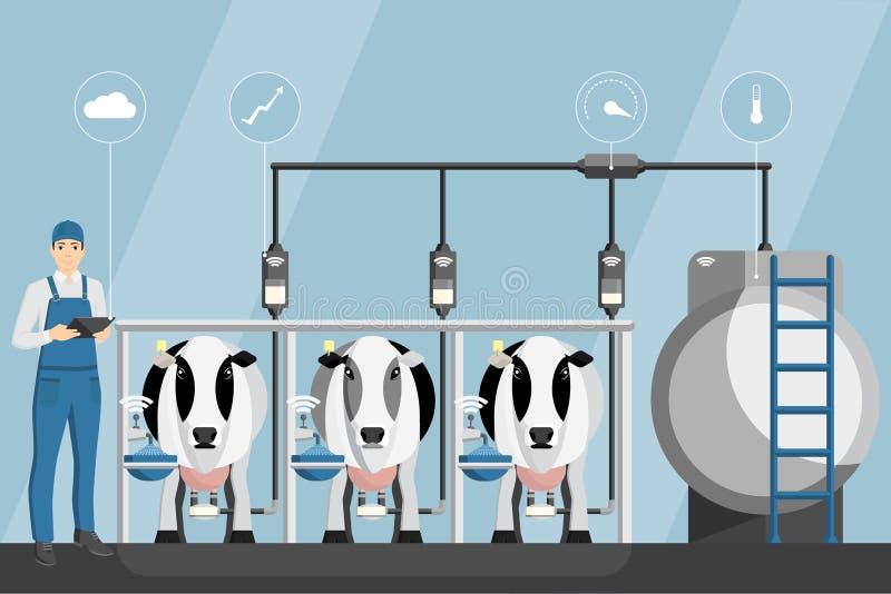 有片剂的农夫在现代奶牛场 库存例证