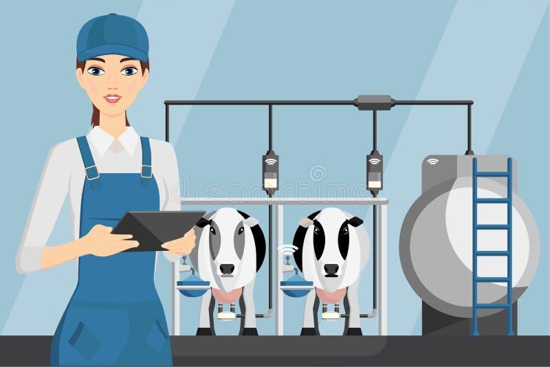 有片剂的妇女农夫在现代奶牛场 库存例证