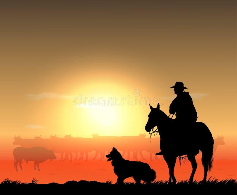 有牧群的牛仔 向量例证