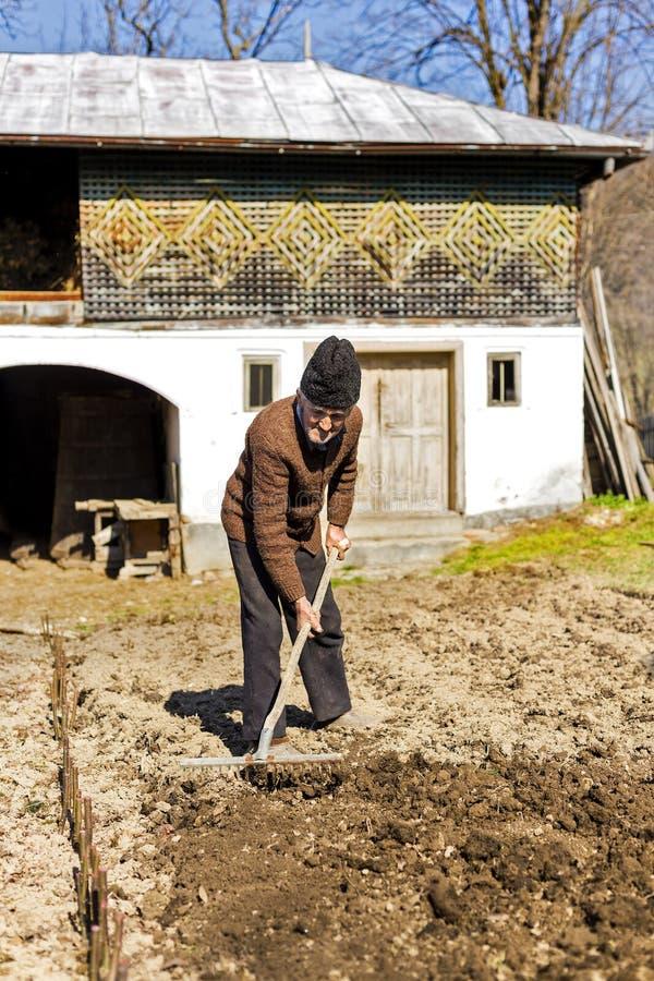 有犁耙工作的老农夫 免版税库存图片