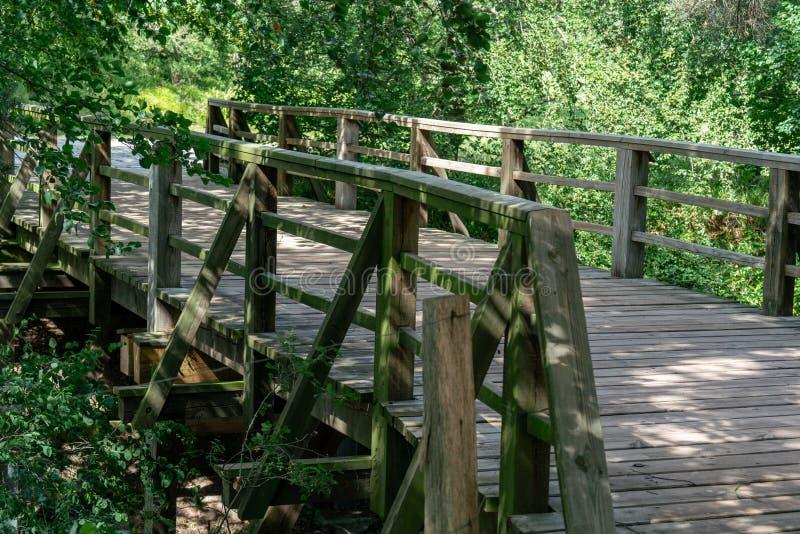 有狂放的自然的木步行桥 免版税库存图片