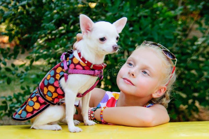 有狗奇瓦瓦狗品种的女孩 库存图片