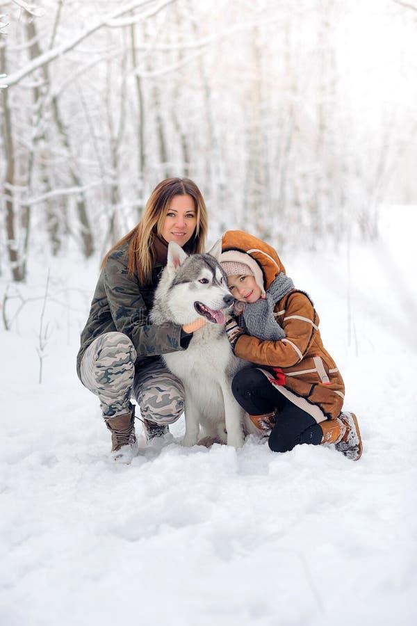 有狗爱斯基摩的幸福家庭在美丽摆在雪木头的 在雪的结构树 免版税库存照片