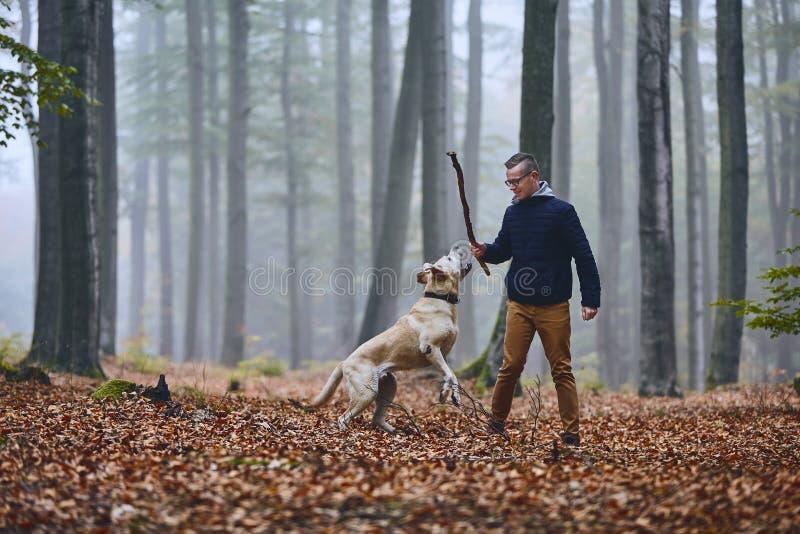 有狗的人在秋天森林里 免版税库存照片