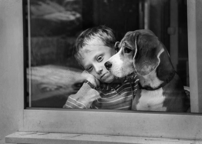 有狗的单独哀伤的小男孩在窗口附近 免版税库存图片