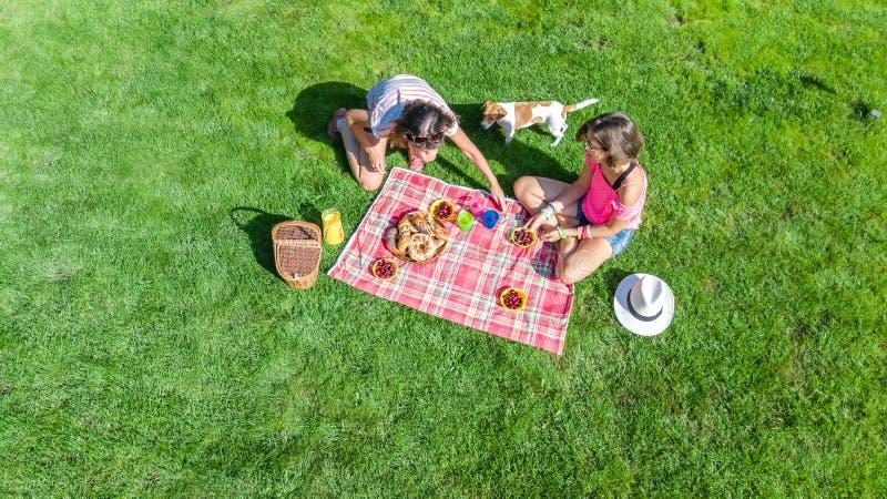 有狗的女性朋友有野餐在公园,坐草和吃健康饭食的女孩户外,空中 免版税图库摄影