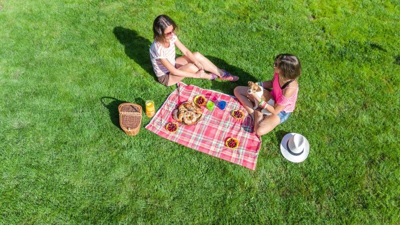 有狗的女性朋友有野餐在公园,坐草和吃健康饭食的女孩户外,空中 免版税库存照片