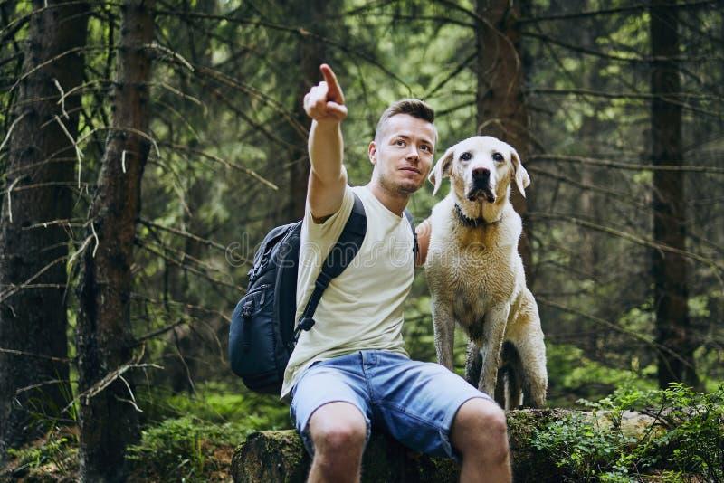 有狗的徒步旅行者在森林里 图库摄影