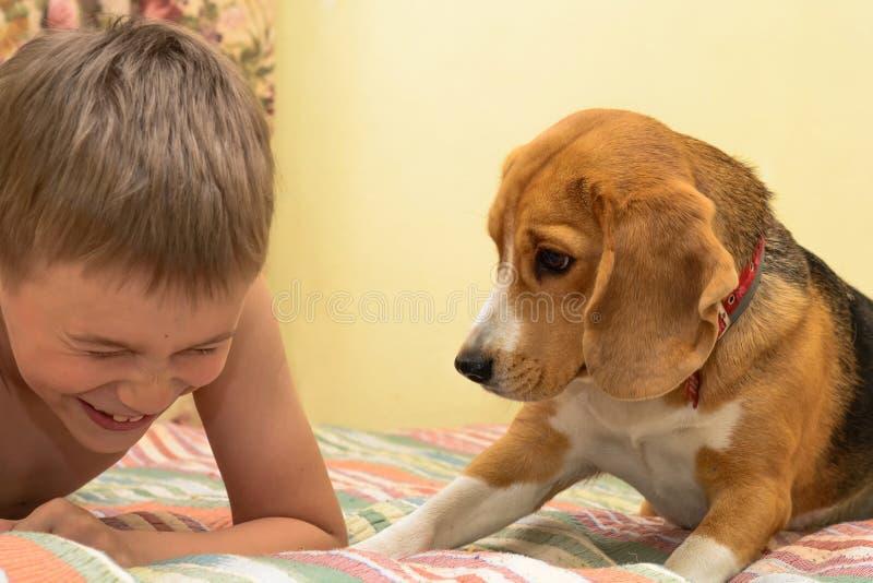 有狗的愉快的男孩在家 免版税库存照片