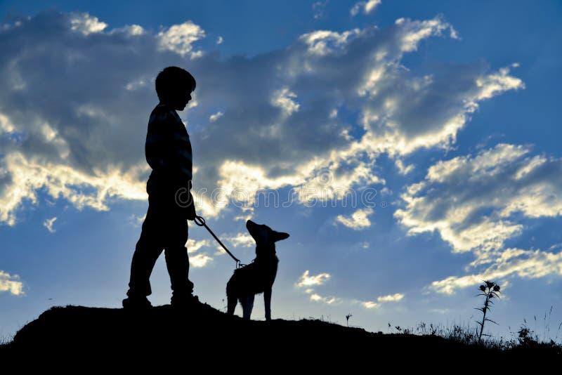 有狗的男孩在小山 免版税库存图片