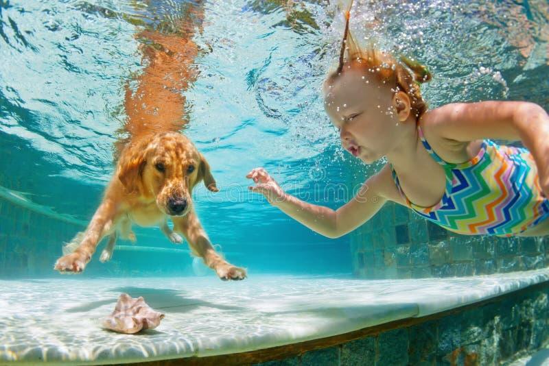 有狗的兴高采烈的孩子在游泳池 滑稽的纵向 库存图片