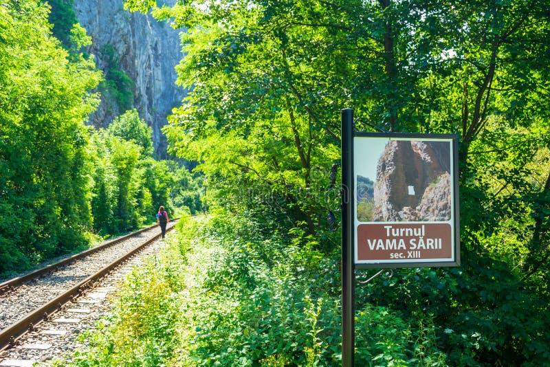 有狭窄的道路的铁路沿着它,提供存取对于数通过ferrata路线在Vadu Crisului,Padurea Craiului山 库存图片