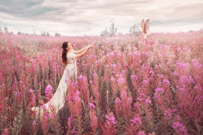 有猫头鹰的妇女在桃红色花的领域 免版税库存照片