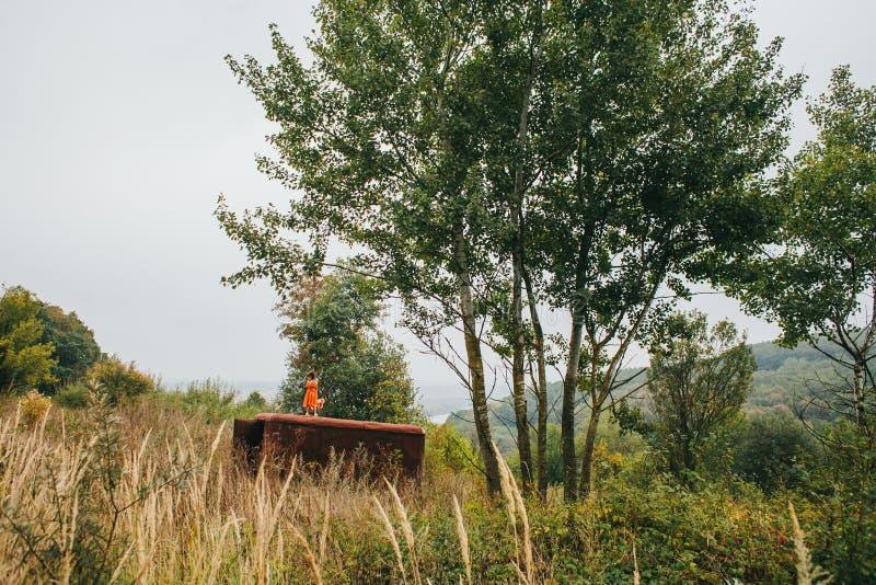 有玩偶的小女孩在老拖车站立在森林 库存照片