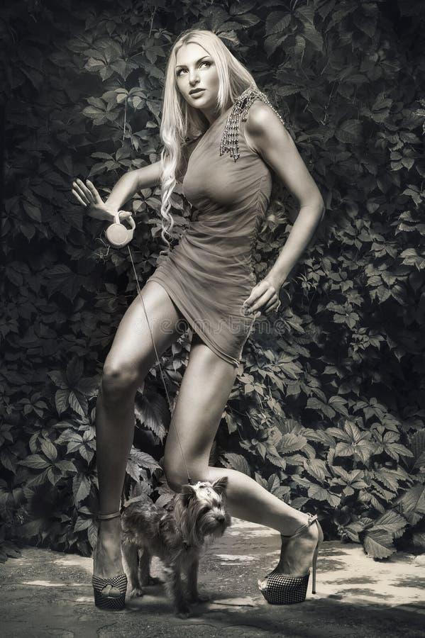 有玩具狗的诱人的妇女 图库摄影