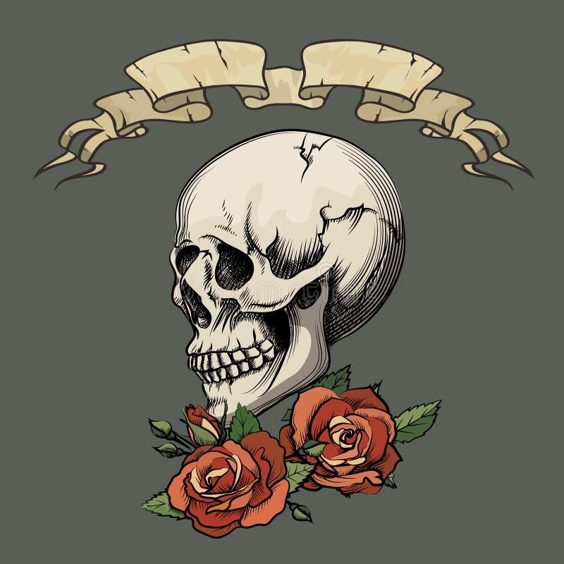 有玫瑰的人的头骨 库存例证