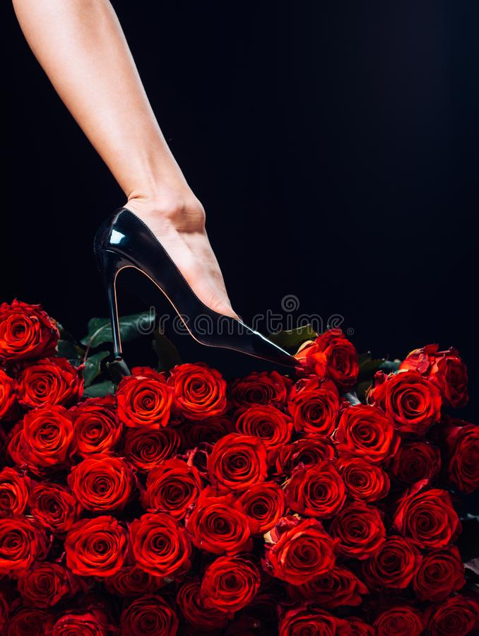 有玫瑰花瓣的性感的妇女腿 健康妇女腿和罗斯在黑 静脉,静脉曲张,女性健康 免版税库存图片