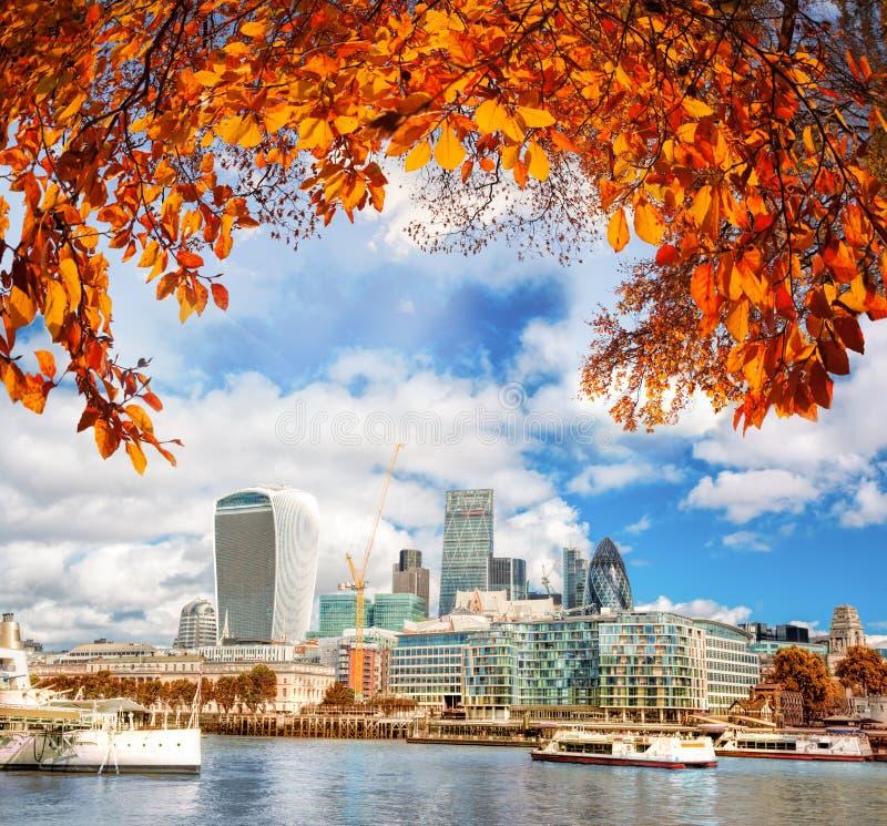 有现代城市的伦敦反对秋叶在英国,英国 免版税库存照片
