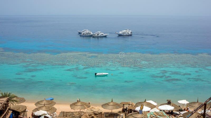有珊瑚礁的惊人的清楚的红海 小船,伞,太阳床 Farsha海滩Sharm El谢赫,埃及 图库摄影