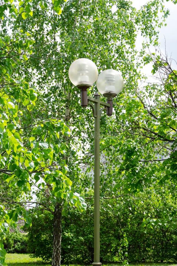 有球状树荫的庭院灯,反对绿色树背景的街道照明  免版税库存图片