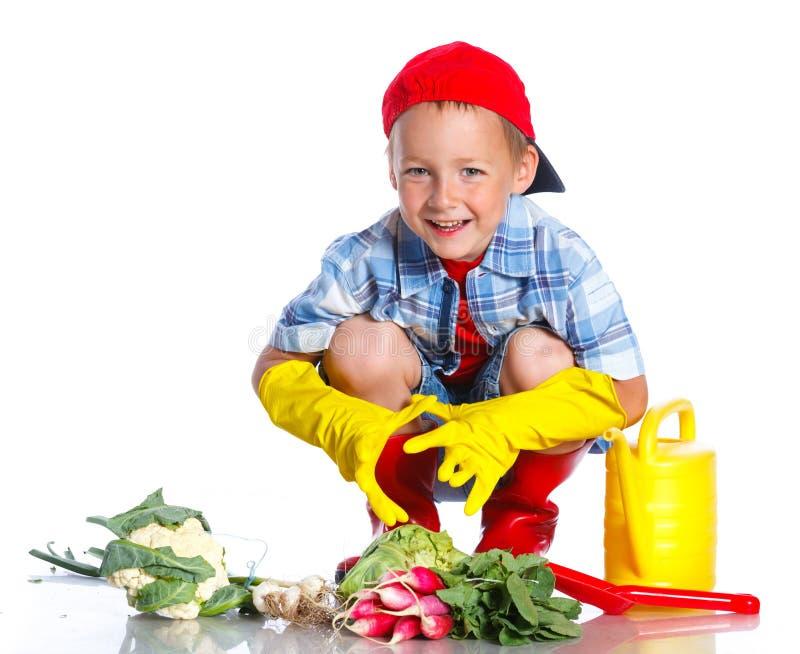 有瓢、新鲜的有机菜和喷壶的逗人喜爱的小男孩 库存照片