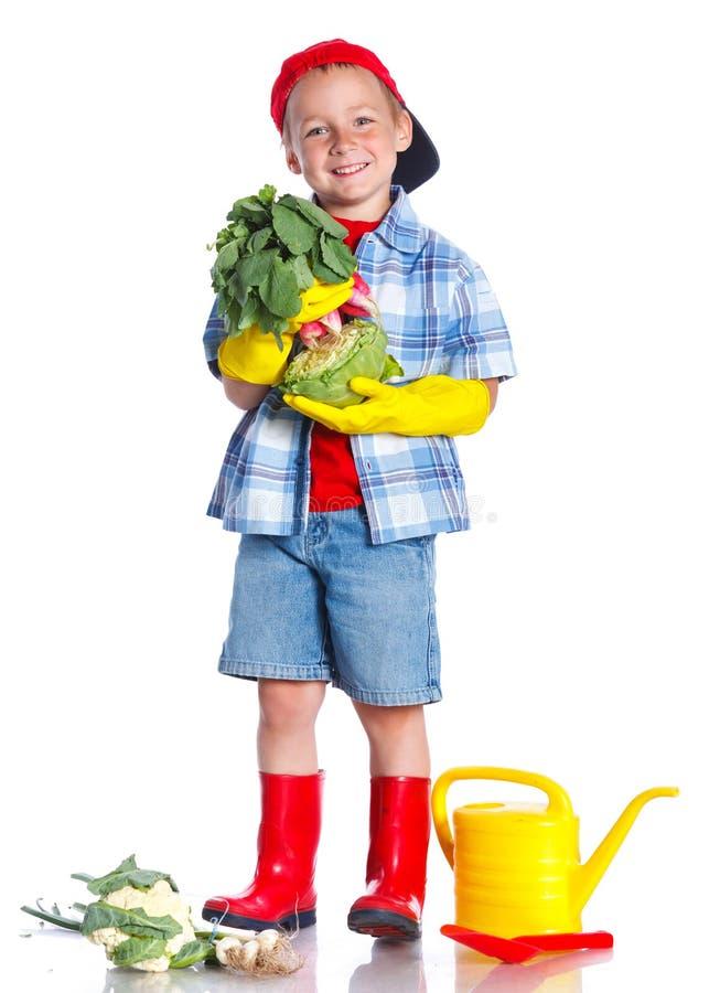 有瓢、新鲜的有机菜和喷壶的逗人喜爱的小男孩 免版税库存图片