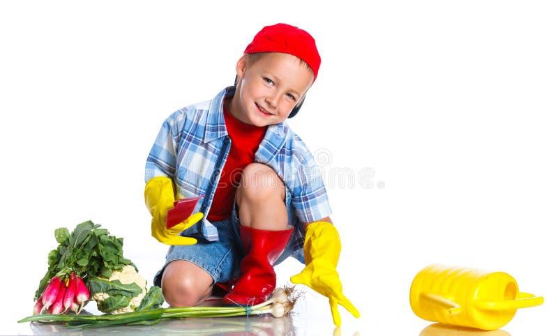 有瓢、新鲜的有机菜和喷壶的逗人喜爱的小男孩 库存图片