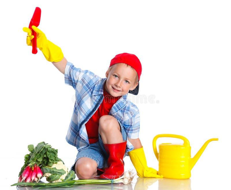 有瓢、新鲜的有机菜和喷壶的逗人喜爱的小男孩 图库摄影