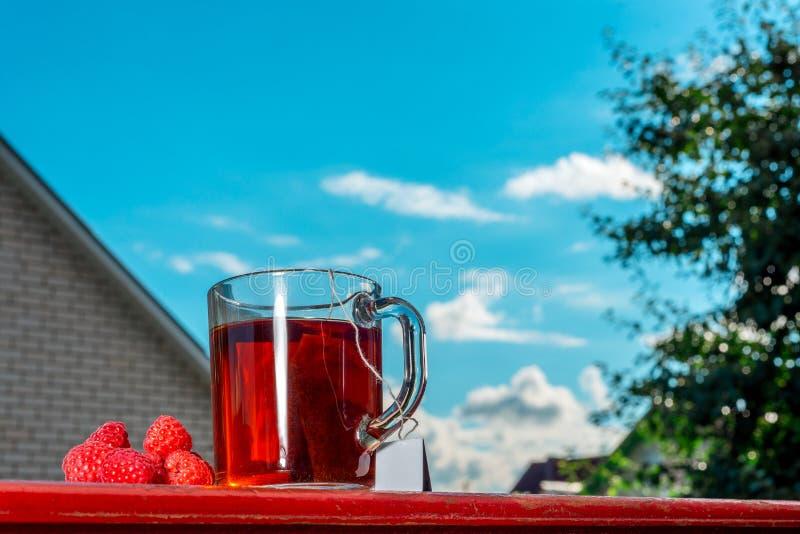 有用的茶从一个袋子酿造了用在自然的新鲜,成熟莓 免版税库存图片