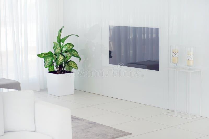 有电视的美丽的客厅 免版税图库摄影