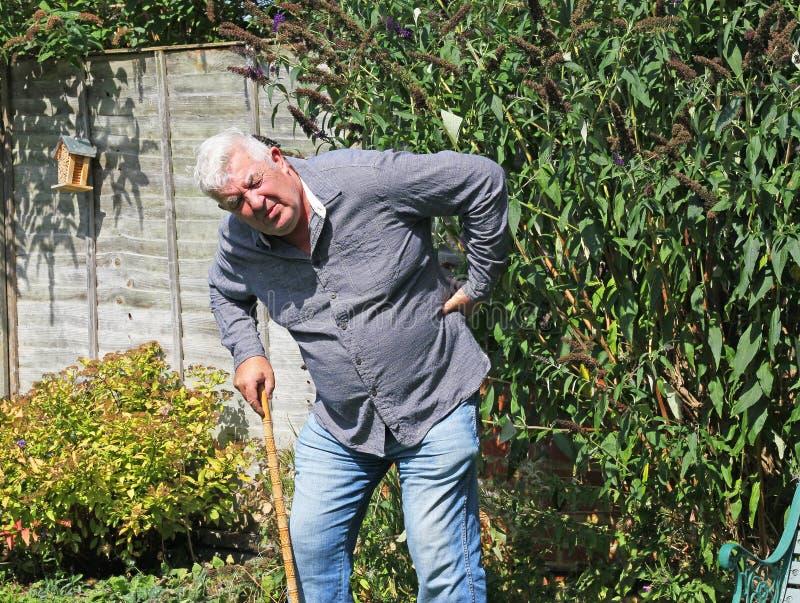 有痛苦的坏后面的老人 坐骨神经痛 免版税库存照片